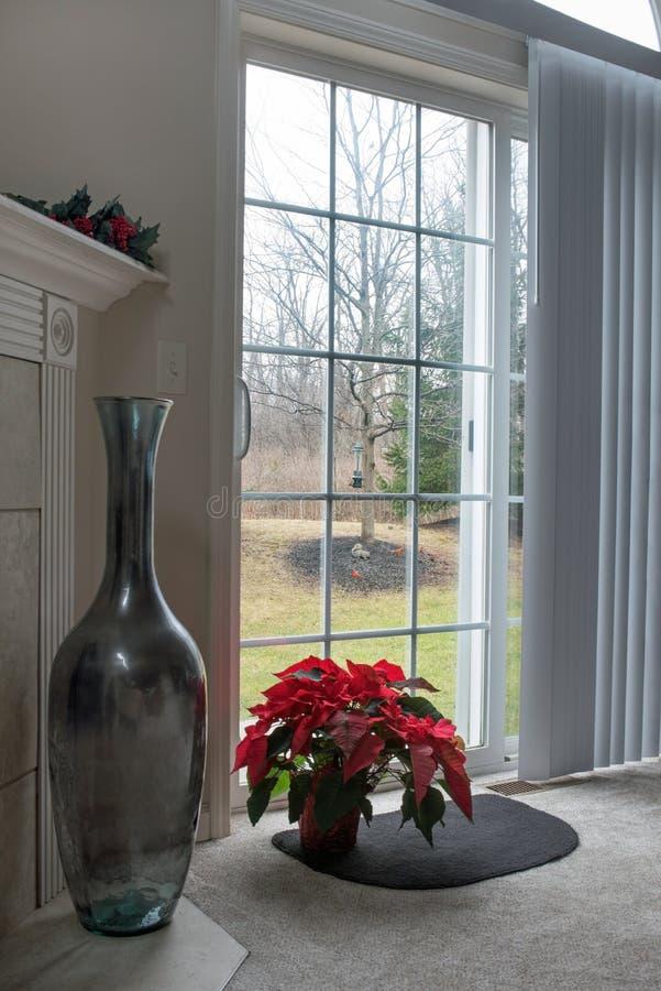 Cena da janela da poinsétia com esquilo & cardeais fotografia de stock royalty free