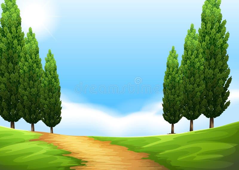 Cena da natureza com fuga e pinheiro ilustração royalty free