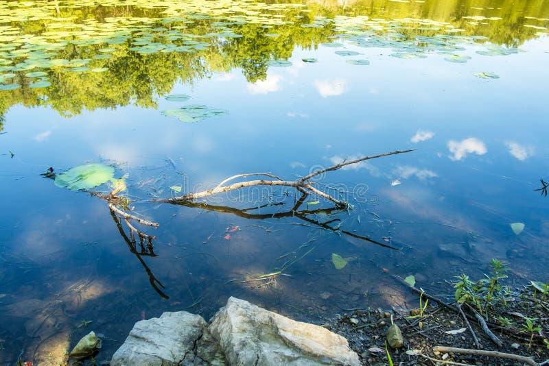 Cena da natureza no rio do DES Milles Iles fotos de stock royalty free