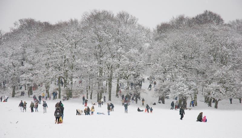 Cena da neve do inverno fotos de stock