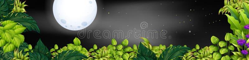 Cena da noite com fullmoon sobre o jardim ilustração stock