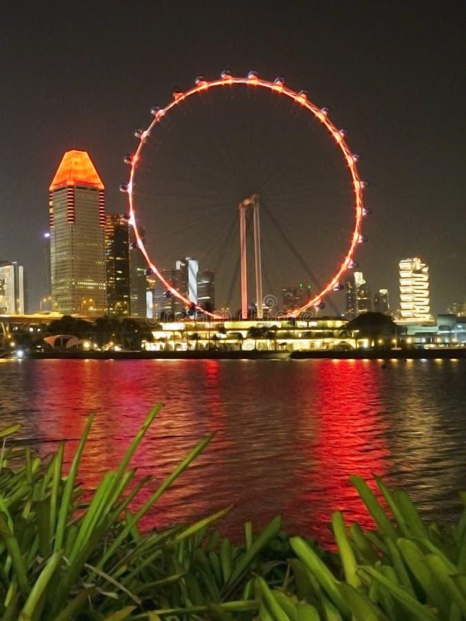 Cena da noite do inseto de Singapura em Marina Bay fotografia de stock