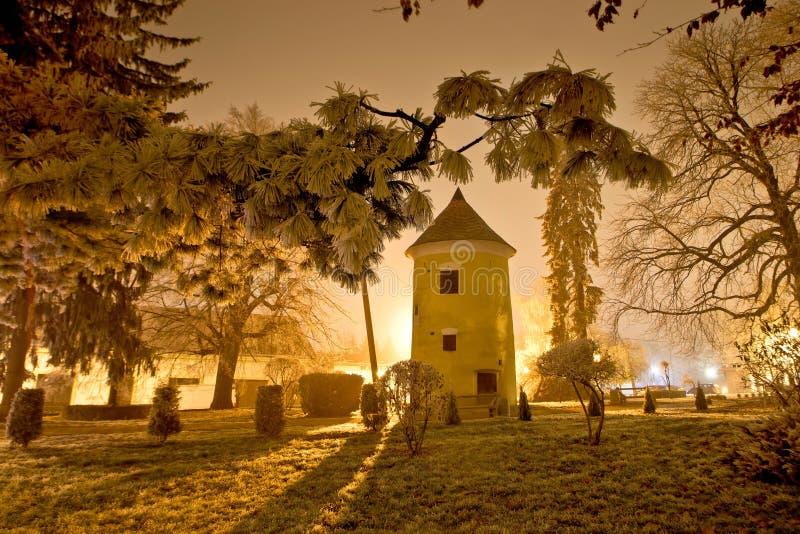 Cena da noite do inverno de Vrbovec no parque fotografia de stock royalty free