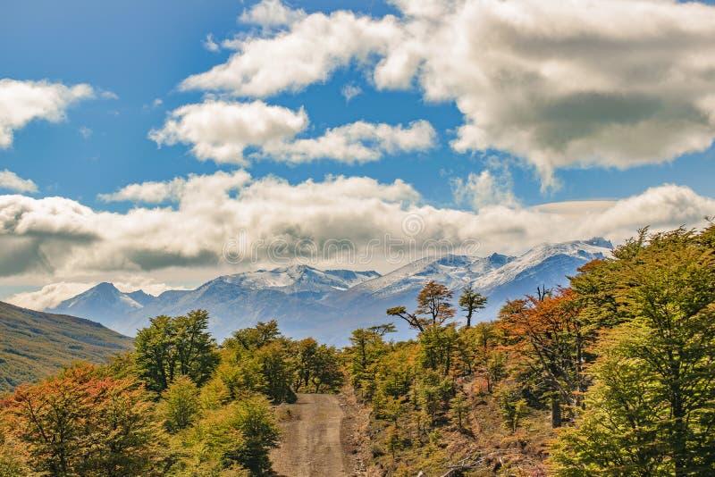 Cena da paisagem do Patagonia - Aisen o Chile fotos de stock royalty free