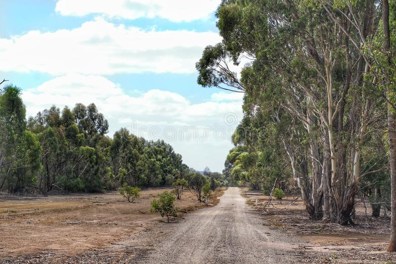 Cena da paisagem do santuário de Serendip em Lara, Victoria, Austrália imagem de stock royalty free