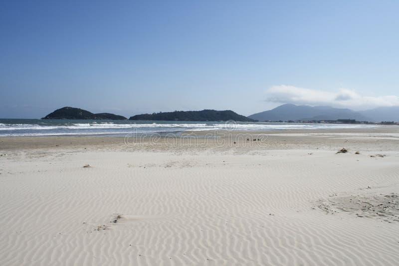 Download Cena da praia foto de stock. Imagem de praia, árvores - 26504522