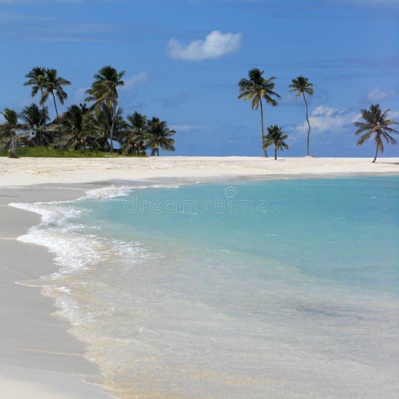 Cena da praia de Bahamas imagem de stock royalty free