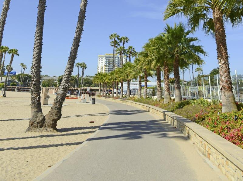 Cena da praia de Califórnia do sul com ressaca, Sun e palmeiras fotografia de stock