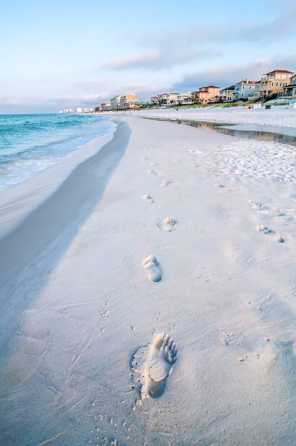 Cena da praia de Florida fotos de stock