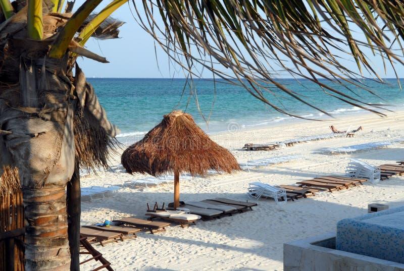 Cena da praia de Mayakoba México imagens de stock