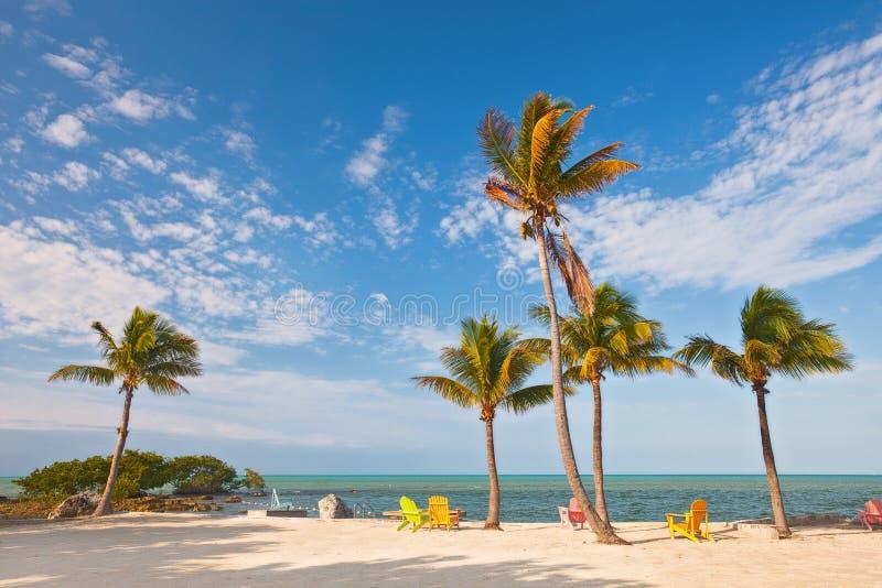 Cena da praia do verão com palmeiras e cadeiras de sala de estar fotos de stock royalty free