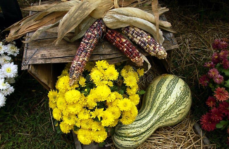 Cena da queda com milho, mums e uma cabaça imagem de stock