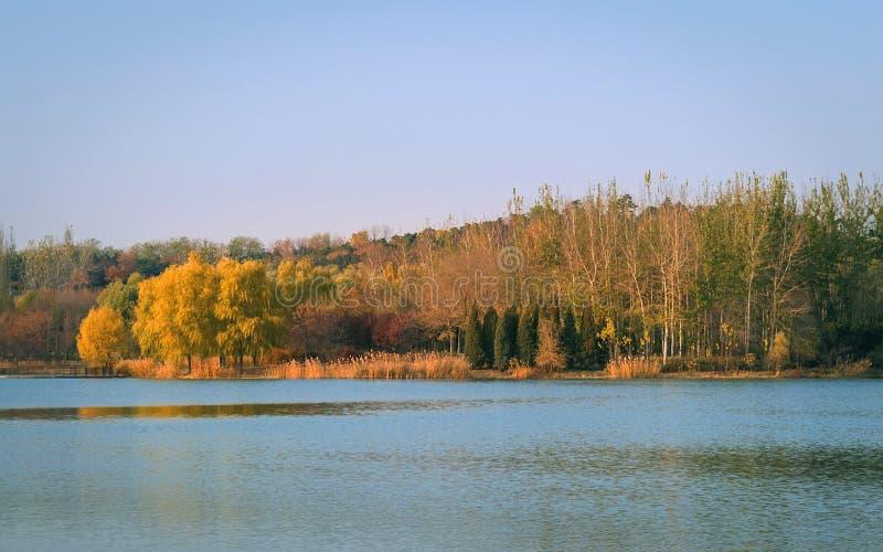 cena da queda do lago com Autumn Trees fotografia de stock