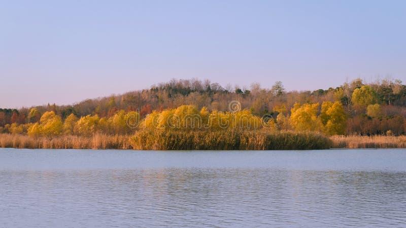 Cena da queda do lago com Autumn Trees 3 fotos de stock royalty free