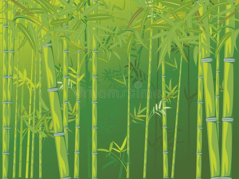 Cena de bambu da floresta ilustração stock