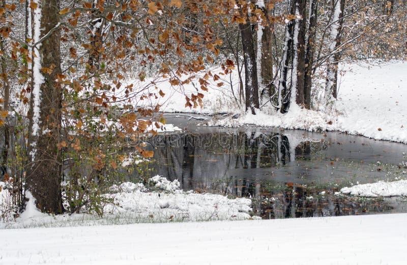 Cena de inverno com um lago gelado e nova neve caída foto de stock