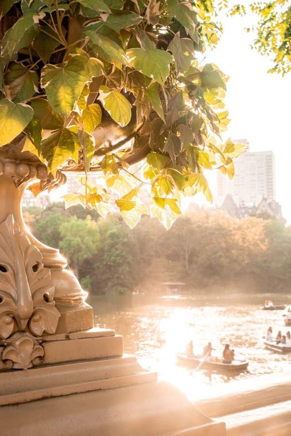 Cena de New York do Central Park fotos de stock royalty free