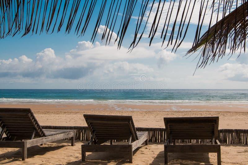 Cena de praia da ilha tropical com cadeiras de bronzeamento voltadas para a praia foto de stock royalty free