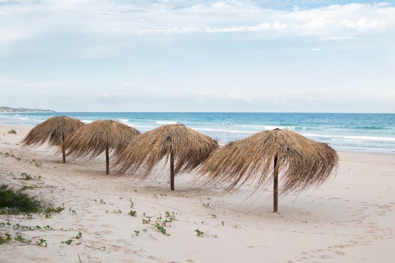 Cena de praia da ilha tropical com guarda-chuvas de palma imagem de stock royalty free