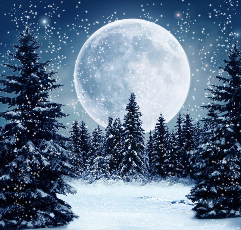 Cena do inverno ilustração stock