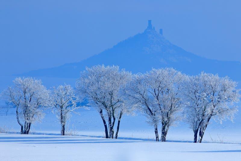 Cena do inverno com neve e árvores Castelo gótico de Hazmburk na montanha rochosa, paisagem do monte em Ceske Stredohori, repúbli imagens de stock