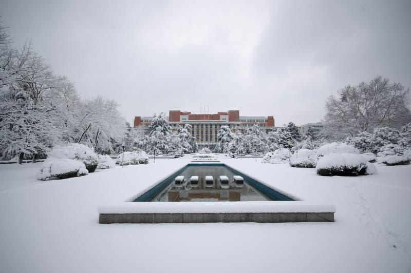 Cena do inverno da neve de USTC imagens de stock royalty free