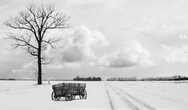 Cena do inverno do campo de um vagão de mandril de madeira velho que senta-se ao lado de uma árvore desencapada solitária no temp fotografia de stock royalty free