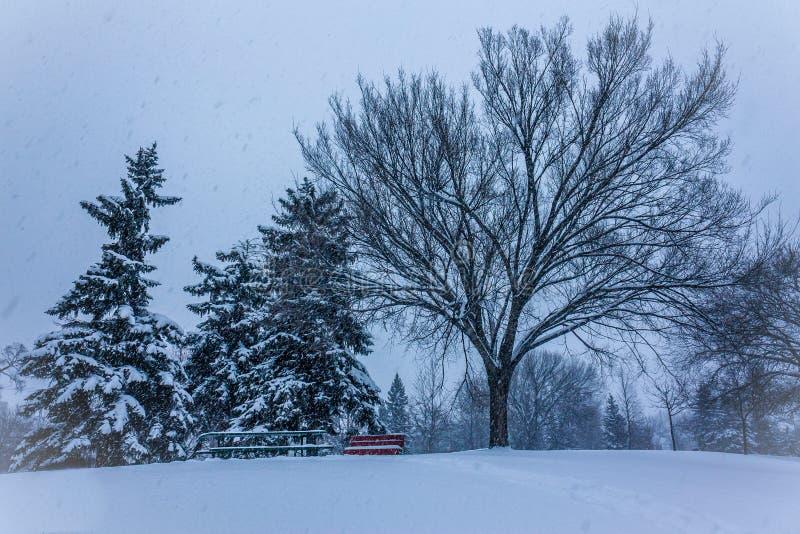 Cena do inverno em Canadá imagens de stock