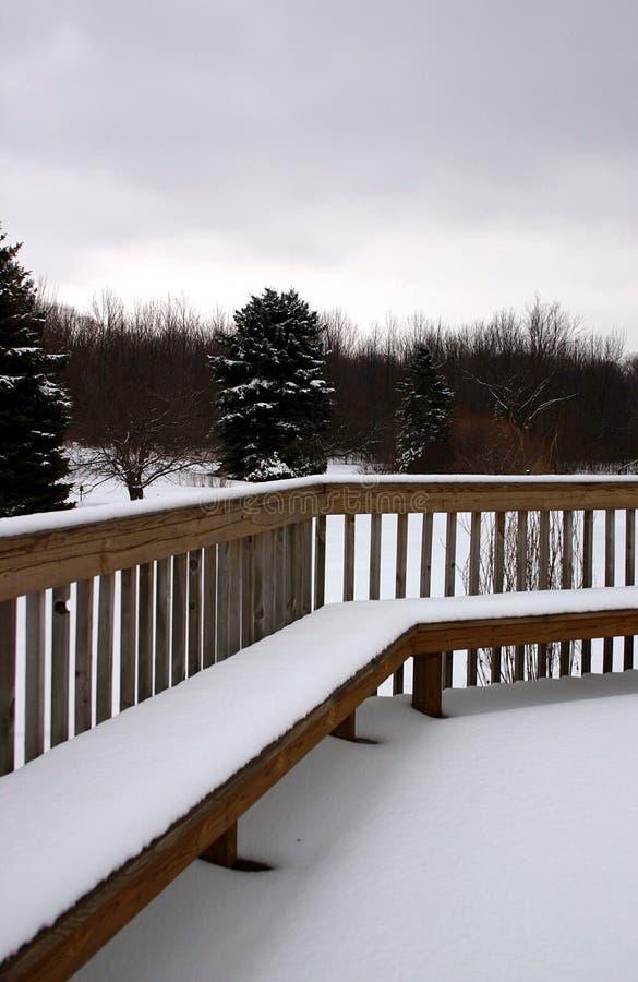 Cena Do Inverno Em Michigan Fotografia de Stock Royalty Free