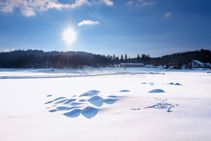 Cena do inverno Represa de Shiroka Polyana em um dia de inverno ensolarado Conto de fadas nevado em Bulgária fotos de stock royalty free