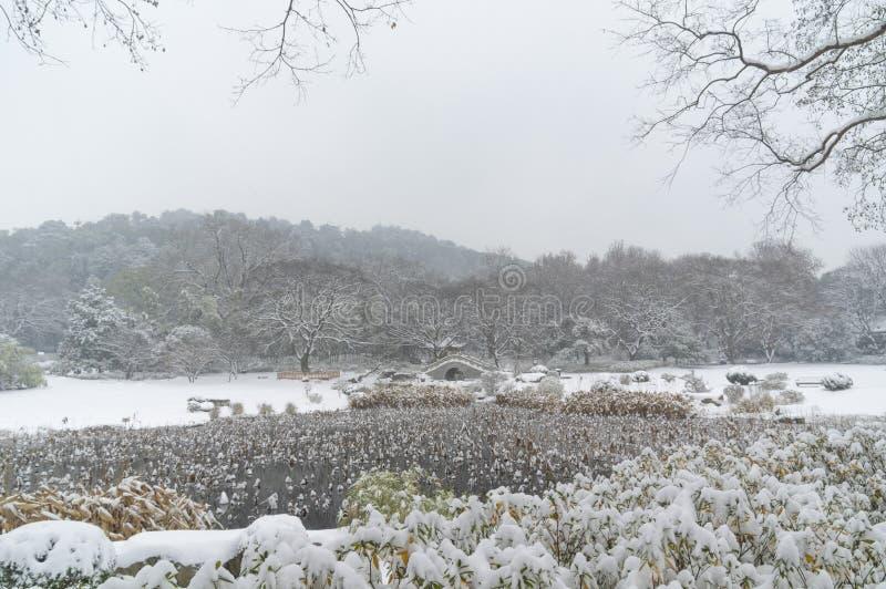 Cena do leste da neve do ponto cênico do lago Wuhan no inverno imagens de stock royalty free