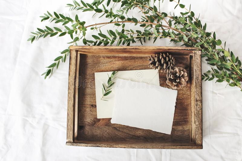 Cena do modelo do Natal ou do casamento do inverno Cartões de papel vazios do algodão, bandeja de madeira velha, cones do pinho e imagens de stock