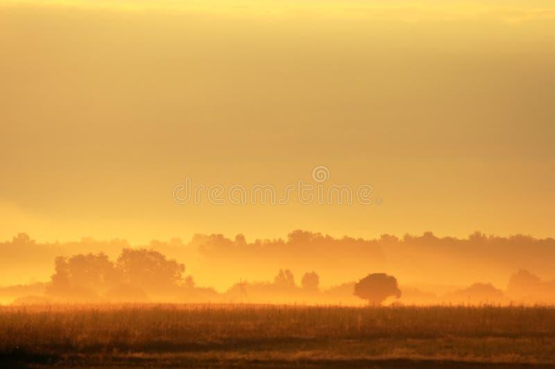 Cena do nascer do sol imagens de stock royalty free