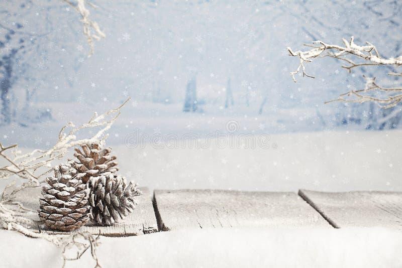 Cena do Natal do inverno imagens de stock