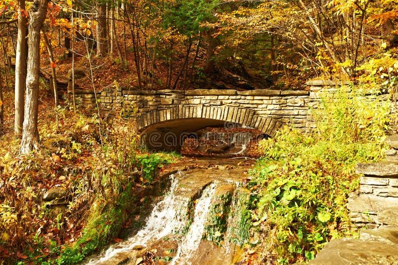 Cena do outono da cachoeira fotografia de stock royalty free