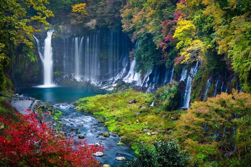 Cena do outono da cachoeira de Shiraito foto de stock royalty free