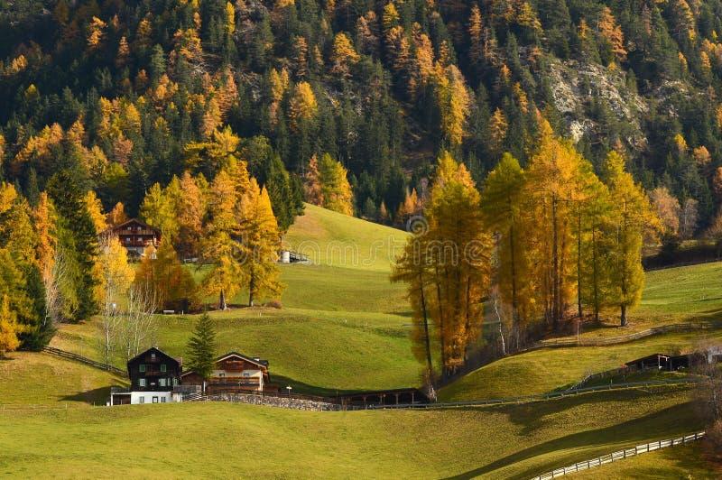 Cena do outono em Val di Funes Estação do outono Bolzano, Italy fotografia de stock royalty free