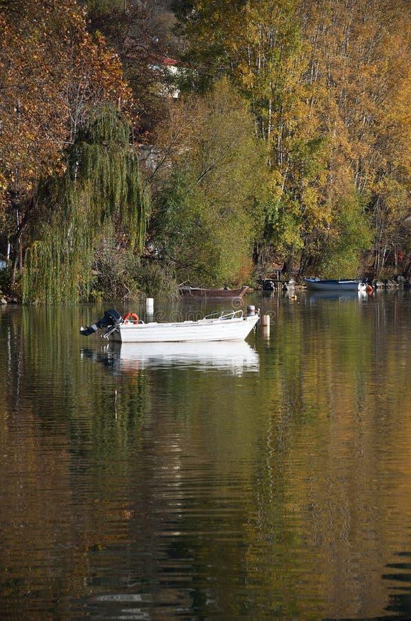 Cena do outono no lago imagens de stock royalty free