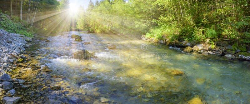 Cena do panorama em Baviera com rio fotos de stock