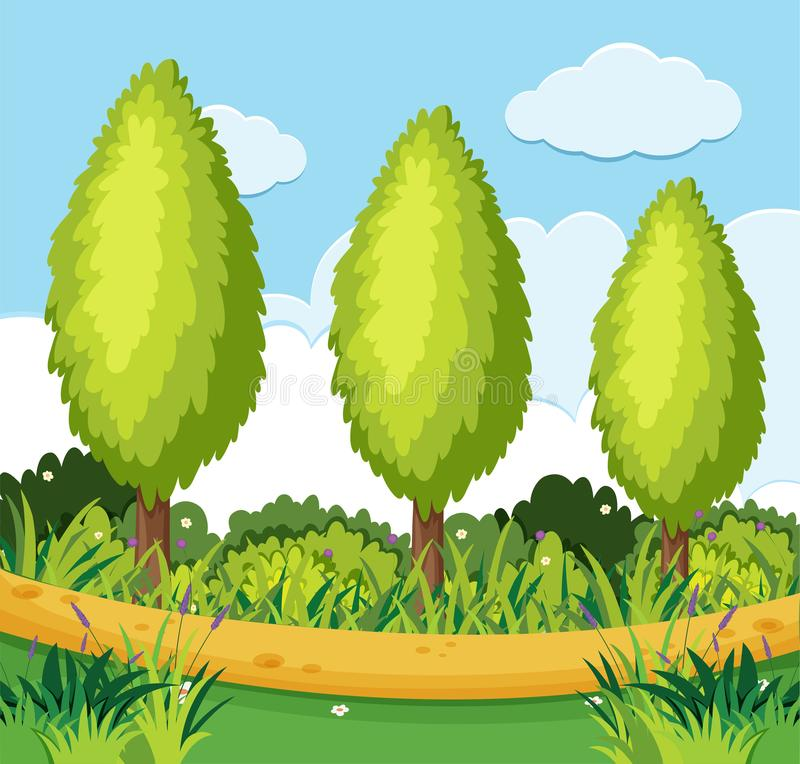 Cena do parque com os pinheiros ao longo da estrada ilustração royalty free