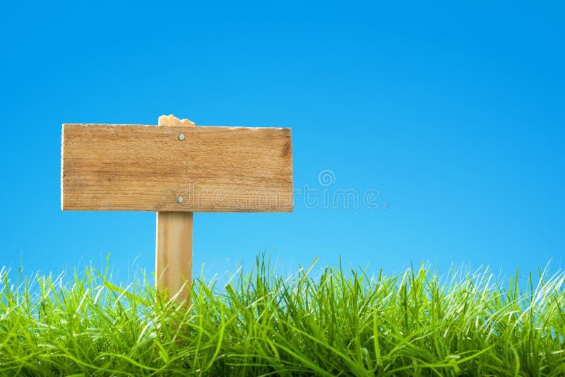 Cena do verão/mola com grama verde e o céu azul do espaço livre - Empt fotografia de stock