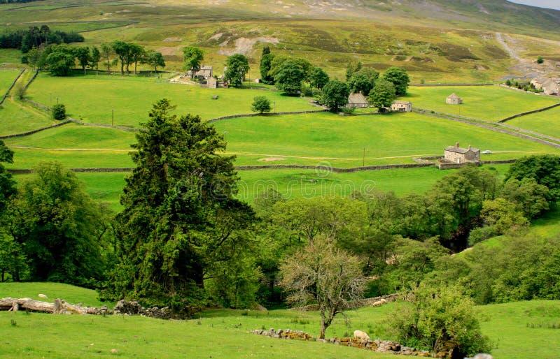 Cena dos Dales de Yorkshire fotografia de stock royalty free