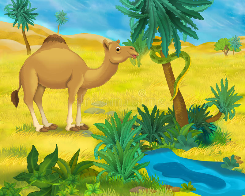 Cena dos desenhos animados - animais selvagens de África - dromedário ilustração do vetor