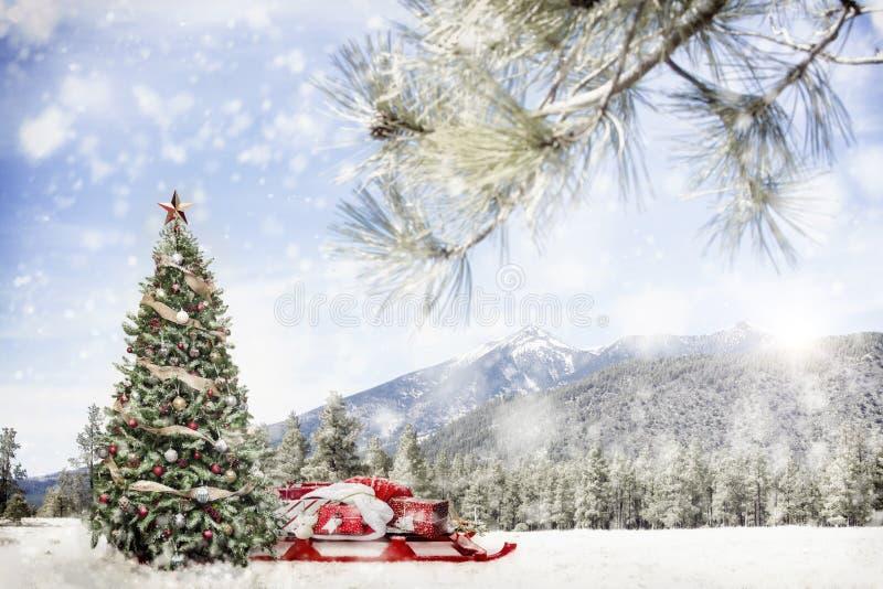 Cena exterior nevado da árvore de Natal nas montanhas imagem de stock royalty free