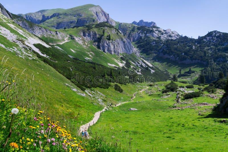 Cena idílico que caminha nas montanhas em cumes austríacos de um dia ensolarado, Rofan da montanha, Karwendel fotos de stock royalty free