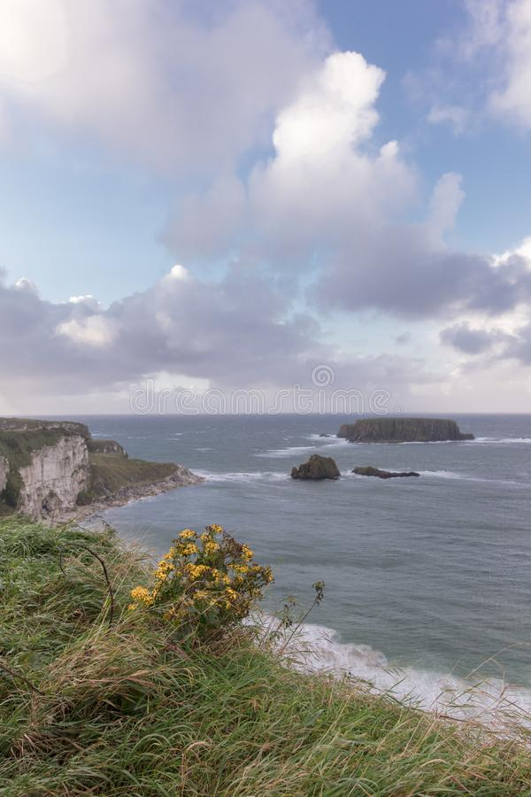 Cena litoral em Irlanda do Norte imagens de stock