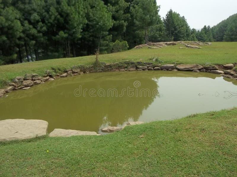 Cena natural atrativa de Sudhnoti Kashmir fotografia de stock
