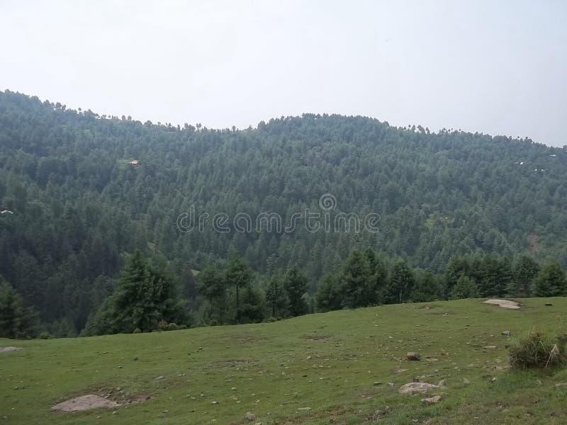 Cena natural atrativa de Sudhnoti Kashmir foto de stock royalty free
