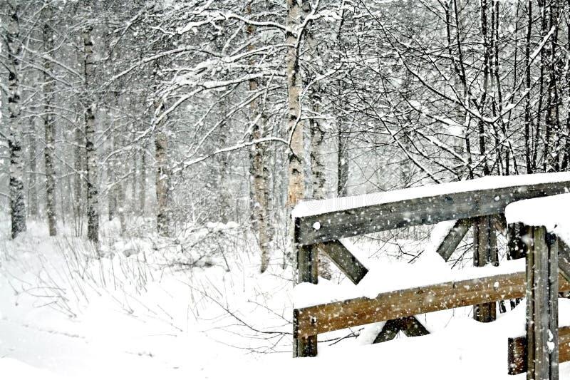 Cena nevado do inverno com uma ponte de madeira fotografia de stock royalty free