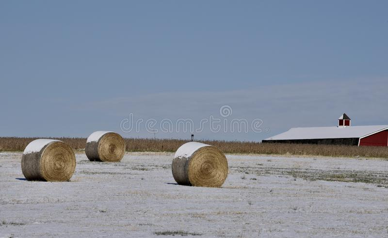 Cena pastoral coberto de neve fotografia de stock royalty free
